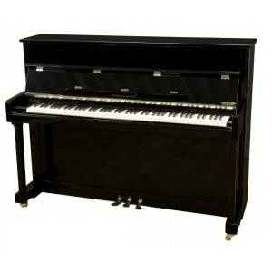 Hermann Jacobi Lugano Occasion Piano